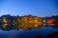 De herfstgebladerte in Rikugien-Tuin, Komagome, Tokyo Royalty-vrije Stock Foto's
