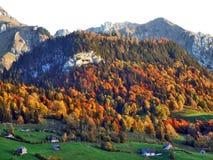 De herfstgevoel op de weilanden en de weiden van Thur-Riviervallei stock fotografie