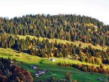 De herfstgevoel op de weilanden en de weiden van Thur-Riviervallei stock foto's