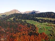 De herfstgevoel op de weilanden en de weiden van Thur-Riviervallei royalty-vrije stock foto's