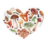 De herfstgiften in de vorm van hart Stock Afbeelding
