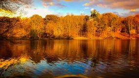 De herfstglorie stock foto's