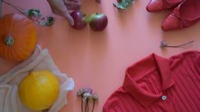 De herfstgroenten, bessen en vruchten Seizoengebonden de herfstvoedsel - pompoenen, graan, appelen, peer, viburnum, physalis lang stock footage