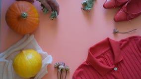 De herfstgroenten, bessen en vruchten Seizoengebonden de herfstvoedsel - pompoenen, graan, appelen, peer, viburnum, physalis lang stock videobeelden