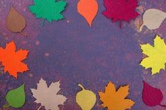 De herfstkaart met ruimte voor tekst Stock Foto's