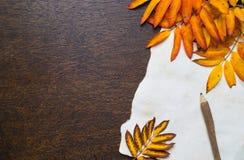 De herfstkader met bladeren en oud document Royalty-vrije Stock Afbeeldingen