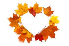 De herfstkader met bladeren op witte achtergrond Stock Afbeelding