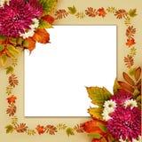 De herfstkader met droge bladeren en van asterbloemen boeketten Stock Foto