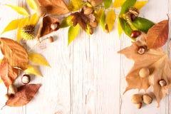 De herfstkader met kleurenbladeren op houten Royalty-vrije Stock Afbeeldingen