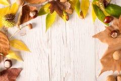 De herfstkader met kleurenbladeren op houten Stock Foto's