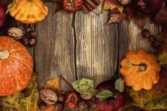 De herfstkader met pompoenen, bladeren, appelen en noten Stock Fotografie