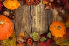 De herfstkader met pompoenen, bladeren, appelen en noten Royalty-vrije Stock Fotografie