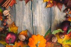 De herfstkader met pompoenen, bladeren, appelen en noten Stock Afbeelding