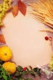 De herfstkader met pompoenen, tarwe en bladeren Royalty-vrije Stock Afbeeldingen