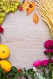 De herfstkader met pompoenen, tarwe en bladeren Stock Foto