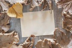 De herfstkader met uitstekend document Royalty-vrije Stock Foto's