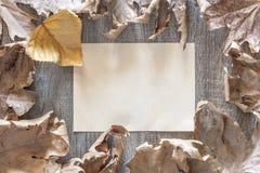 De herfstkader met uitstekend document Stock Afbeeldingen