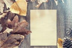 De herfstkader met uitstekend document Stock Fotografie