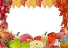 De herfstkader met vruchten en bladeren Royalty-vrije Stock Afbeelding