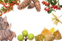 De herfstkader op witte achtergrond met exemplaarruimte Royalty-vrije Stock Afbeeldingen