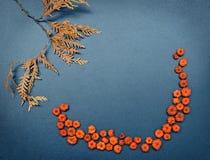 De herfstkader, pompoenen, cederbladeren Stock Afbeelding