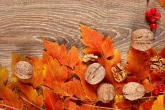 De herfstkader van bladeren op houten achtergrond Royalty-vrije Stock Fotografie