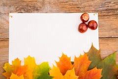 De herfstkader van esdoornbladeren en kastanje Stock Foto
