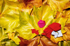 De herfstkleding Royalty-vrije Stock Fotografie