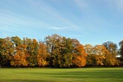 De herfstkleur Stock Fotografie