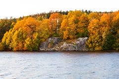 De herfstkleur in bomen dichtbij meer Stock Afbeelding