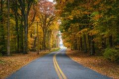 De herfstkleur langs Carmichael-Road, dichtbij Yeiland, Maryland stock afbeelding