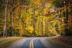 De herfstkleur langs Carmichael-Road, dichtbij Yeiland, Maryland royalty-vrije stock fotografie