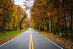 De herfstkleur langs Carmichael-Road, dichtbij Yeiland, Maryland royalty-vrije stock afbeelding
