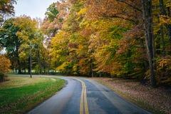 De herfstkleur langs Carmichael-Road, dichtbij Yeiland, Maryland royalty-vrije stock foto