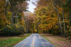 De herfstkleur langs Carmichael-Road, dichtbij Yeiland, Maryland stock afbeeldingen