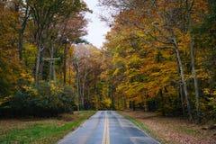 De herfstkleur langs Carmichael-Road, dichtbij Yeiland, Maryland stock foto's