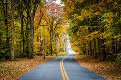 De herfstkleur langs Carmichael-Road, dichtbij Yeiland, Maryland royalty-vrije stock afbeeldingen