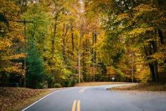 De herfstkleur langs Carmichael-Road, dichtbij Yeiland, Maryland royalty-vrije stock foto's