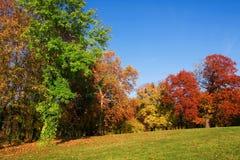 De herfstkleuren Royalty-vrije Stock Afbeelding