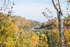 De herfstkleuren Stock Foto's