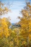 De herfstkleuren Royalty-vrije Stock Foto