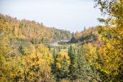 De herfstkleuren Stock Afbeelding