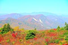 De herfstkleuren bij Kurikoma-hooglanden in Akita en Iwate royalty-vrije stock foto's