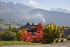 De herfstkleuren in de Alpen Stock Afbeeldingen