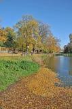 De herfstkleuren in de Tsjechische Republiek stock foto's