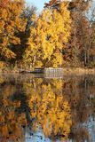 De herfstkleuren in Minnesota royalty-vrije stock afbeeldingen