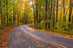 De herfstkleuren, Westelijk Noord-Carolina backroads royalty-vrije stock foto's