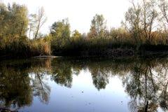 De herfstkreek op de rivier Royalty-vrije Stock Afbeeldingen