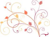 De herfstkrullen Royalty-vrije Stock Afbeeldingen
