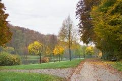 De herfstlandschap stock afbeeldingen